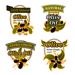 Olive oil label set with black fruit and splash
