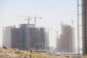 Cranes building a block