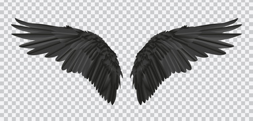 Vector pair of black realistic wings on transparent background Wall mural