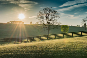 Sun Shines Over Rolling Kentucky Field