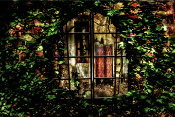 From the outside in /  A look through a vine covered window looking inside to an abandoned room.