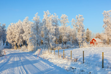 Winter road with a red cottage in rural landscape