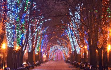 Christmas illumination on downtown street
