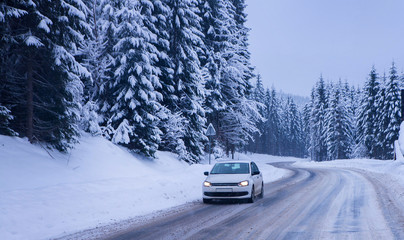 Christmas winter landscape, spruce and pine trees covered in snow on a mountain road