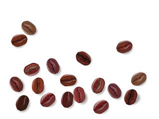 Coffee beans isolated on a white background. Vector illustration
