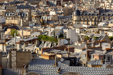 Paris rooftops in summer with their roof gardens, mansard and French roofs. 17th Arrondissement of Paris, France