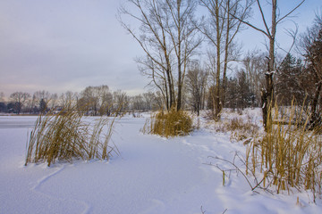 winter landscape, view of the frozen lake