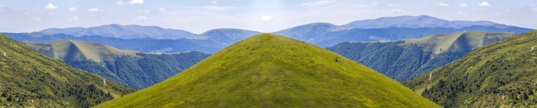Panorama of green hills in summer mountains