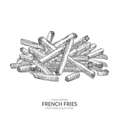 Hand drawn french fries illustration with ink and pen. Vintage black and white fast food vector element.