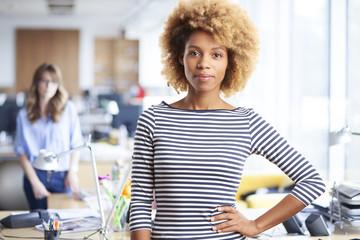 Busiensswoman in the office