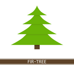 Vector illustration of fir tree isolated on white background. Christmas tree in flat style.