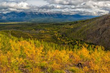 Autumn color over a mountain valley in Montana