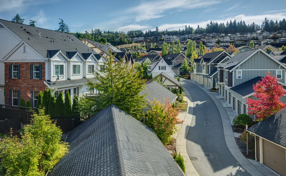Curvy Residential Road in Issaquah, Wa