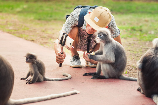 Travel selfie with cute monkeys. A young man takes a picture of wild animals. Spectacled langurs leave their isolated rocky forest to visit people to get food in Prachuap Khiri Khan, Thailand