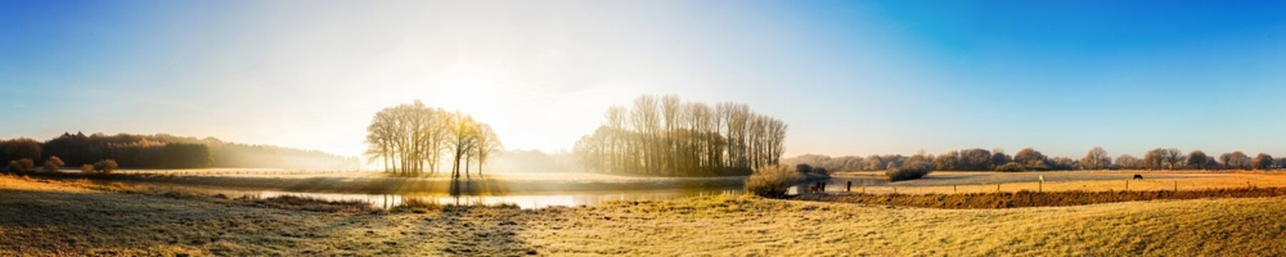 Beautiful panorama of an autumn landscape at sunrise with river, forest and horses on a meadow