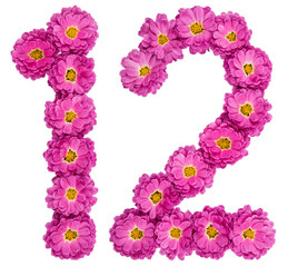 Arabic numeral 12, twelve, from flowers of chrysanthemum, isolated on white background