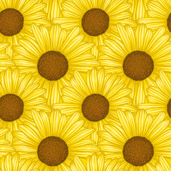 Beautiful seamless pattern with flowers daisy. design forgreeting cards and invitations of wedding, birthday, Valentine's Day, mother's day and other seasonal holiday.