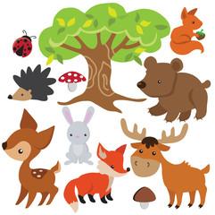 Forest animal vector cartoon illustration