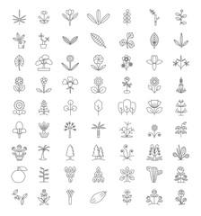 Tree Thin Line Icon Set