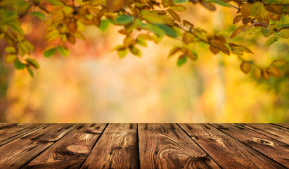 Autumn background table