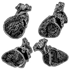 Set of hearts hand drawn isolated on background. Hand drawn anatomical flesh tattoo human heart with detailed veins. Vector.