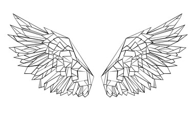 Polygonal wings