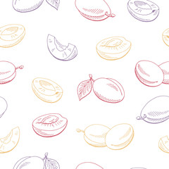 Plums fruit graphic color seamless pattern sketch illustration vector