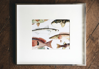 Wall Mural - Photo of hand drawing fish in a frame