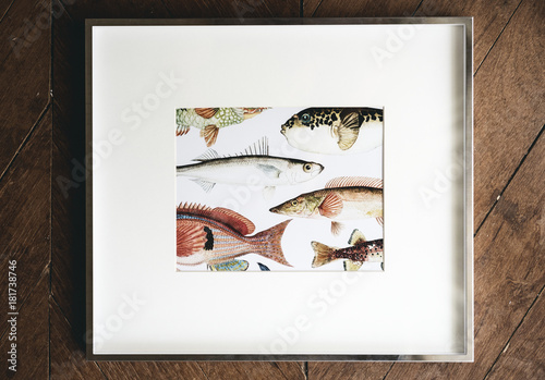 Photo of hand drawing fish in a frame\