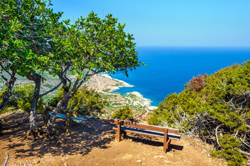 Trees with a bench against the sea, Akamas peninsula, Cyprus