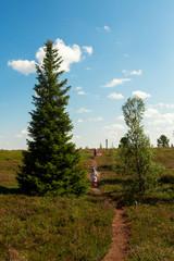 The North of Russia, Murmansk oblast, the village of Varzuga, tundra, dwarf trees