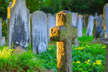Spoed Fotobehang Begraafplaats Selective focus, golden sunlight shining on cemetery in Hampstead of London