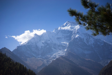 Peak and trees in the Himalaya mountains, Annapurna region, Nepal