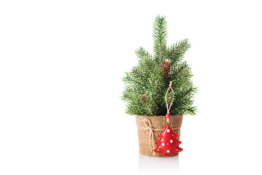 Christmas tree with red decoration isolated on a white