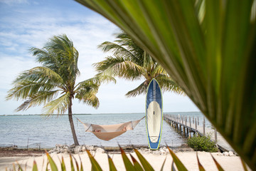 Person relaxing in hammock between two palm trees, surf board resting against palm tree