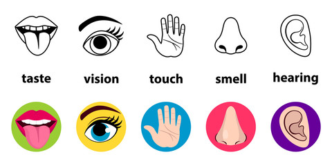 Set of five human senses: vision (eye), smell (nose), hearing (ear), touch (hand), taste (mouth with tongue). Simple line icons and color circles. vector illustration isolated on white background