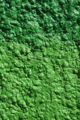 Grüne Steinmauer, Steintextur