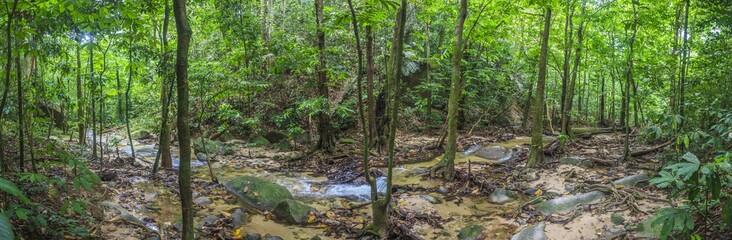 Panoramaaufnahme eines Flusslaufes im Krau Wildlife Reserve in Malaysia fotografiert tagsüber im November 2013