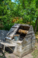 An old village well with a bucket under a tree.