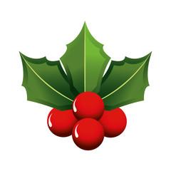 Christmas flower design