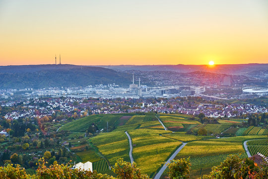 Vineyards in Stuttgart / colorful wine growing region in the south of Germany with view over Neckar Valley