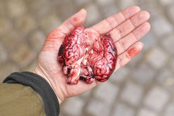 Pig brain in a hand