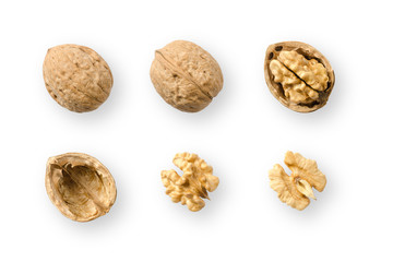 Walnuts, whole and opened, on white background. Top views of nuts and kernel halves. Seeds of the common walnut tree Juglans regia, used as snack and for baking. Macro food photo close up from above.