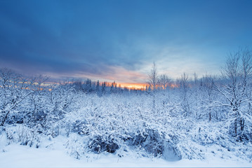 Beautiful And Dramatic Winter Sunset Landscape Scenery With Trees Covered In The Snow In Lapland Finland, Europe Happy New Year