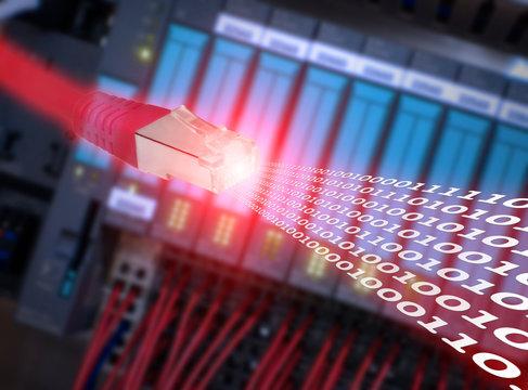Red Ethernet cabel