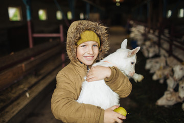 Little boy hugging goat on the goat cheese farm