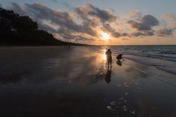 Muschel sammeln im Sonnenuntergang