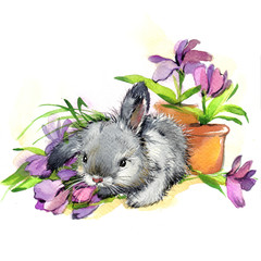 Watercolor bunny and flowers