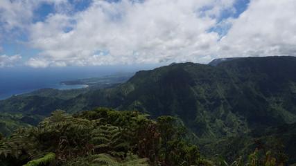 overview from the alakai swamp trail overlooking hanalei bay, kauai, hawaii