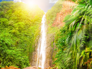Ingelijste posters Watervallen Carbet Falls or Les Chutes du Carbet at sunset, one of three waterfalls in tropical rainforest on Carbet River, Guadeloupe island, French Caribbean. The falls are one of the most popular visitor sites